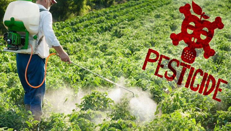 pesticide danger cancer