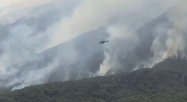 Vatrat e zjarrit nga Jugu në Veri, reagon Peleshi: Strukturat e mbrojtjes