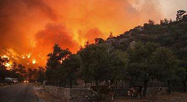 Turqi: Zjarret arrijnë pikë kritike dhe i afrohen termocentraleve