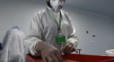 Algjeria fillon prodhimin e vaksinës 'Sinovac'