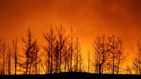 Vatrat e zjarreve në jug të Turqisë, shkon në 8 numri i
