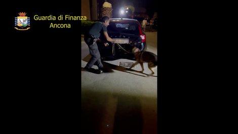 Me 2 milionë euro kokainë në makinë/ Shqiptari dhe rumunia