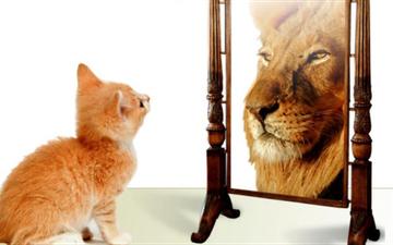 Gjuha e trupit: Si të dukeni me vetëbesim