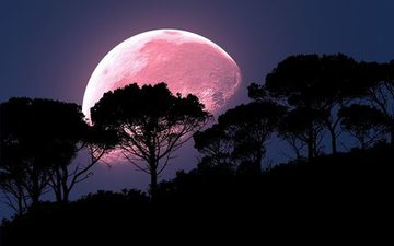 Spectacular views of the Pink Moon