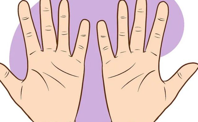 Ç'thonë vijat e dorës për ju: Lexojeni vetë