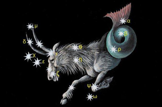 Horoskopi i vitit 2019 nga Susan Miller: Bricjapi