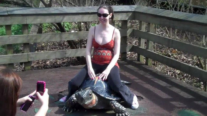 Tuna kritikohet për qëndrimin sipër një breshke