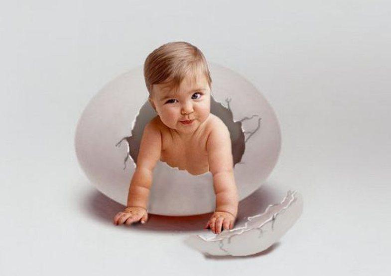Quiz: Ç'pjesë e vezës je ti?