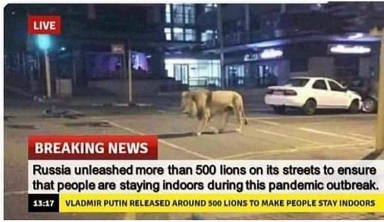 500 luanë rrugëve të Rusisë: Historia qesharake që gati