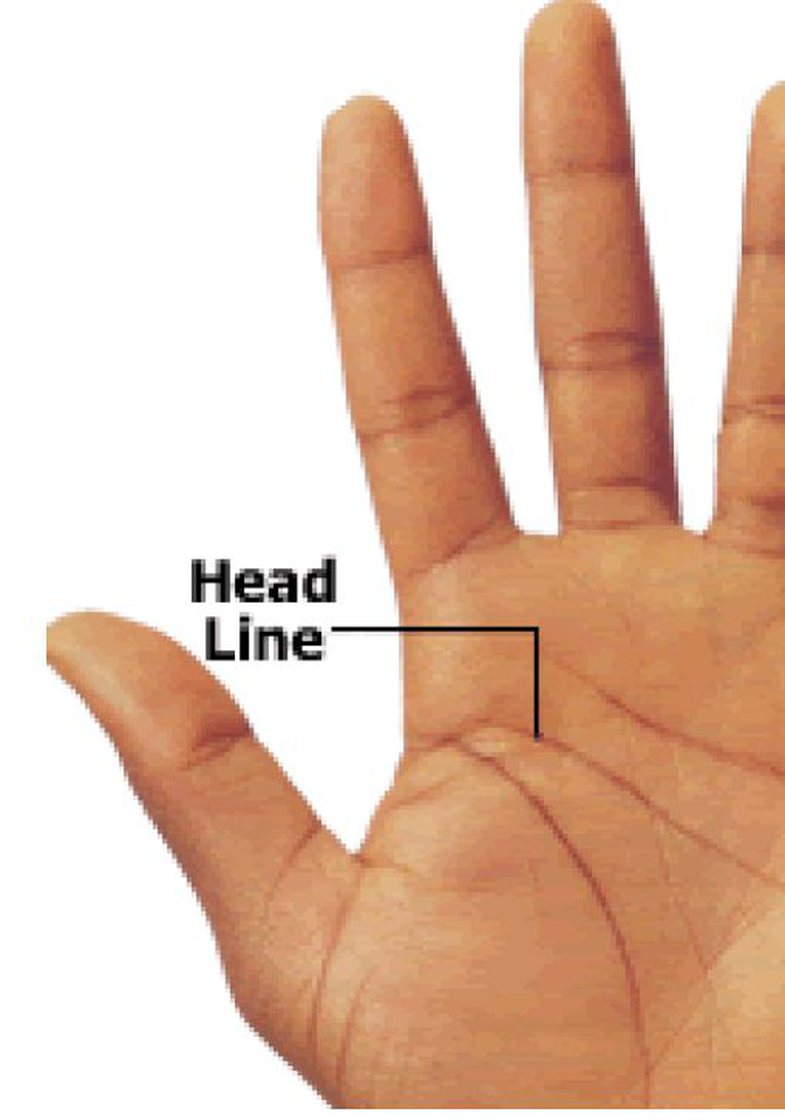 Step by step: How to read the palm of your hand