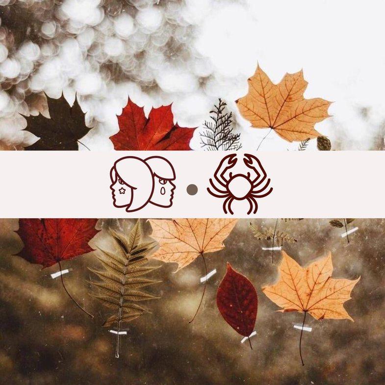Horoskopi i Susan Miller për muajin nëntor 2020: Binjakët dhe
