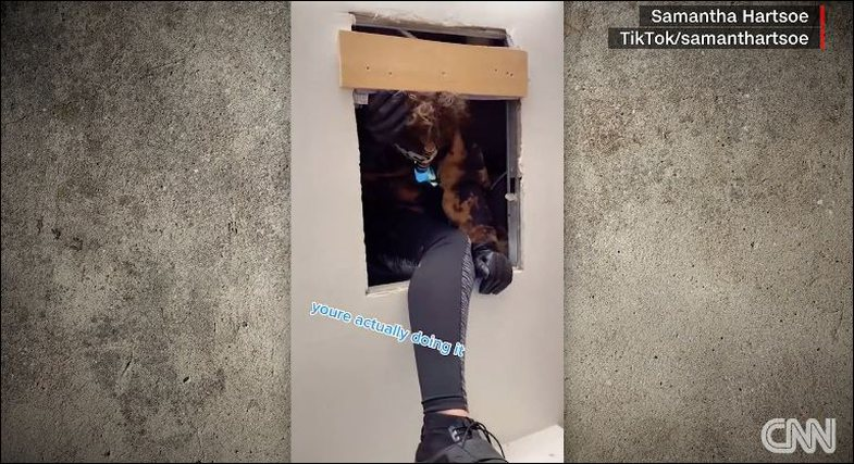 Viral video on TikTok: Someone discovers a secret apartment behind the bathroom