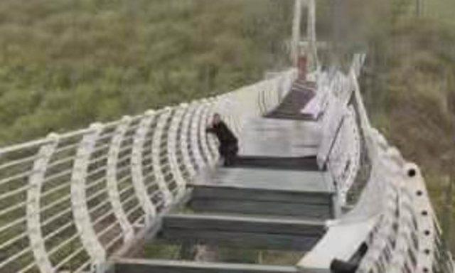 Momente tmerri në Kinë, turisti bllokohet në urën prej qelqi