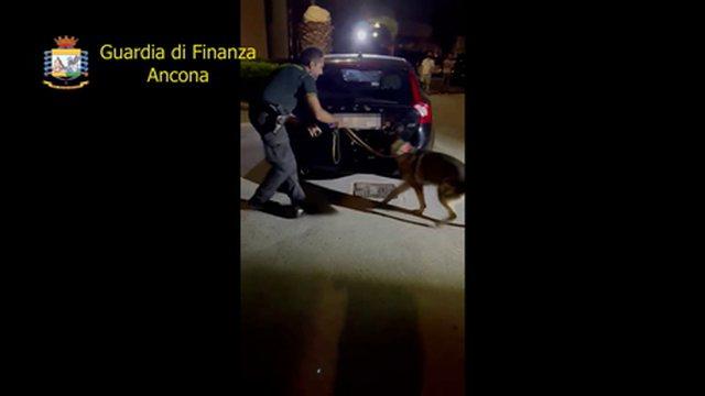 Me 17 kg kokainë në makinë, arrestohet shqiptari me rumunen