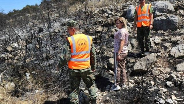 Zjarret në Shqipëri, vjen reagimi i Ministrisë së