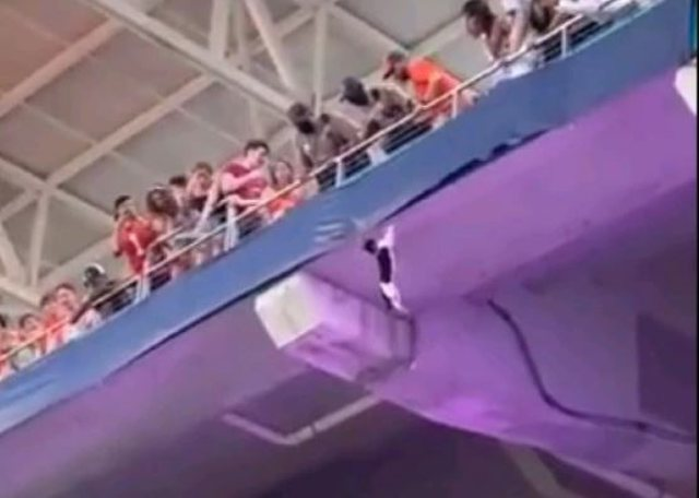Video virale/ Momenti kur macja bie nga stadiumi por mbijeton pasi e