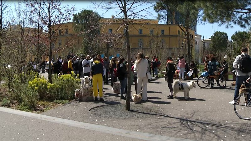 Third Animal Protest, Citizens: The Lack Of Official Response Confirms Our