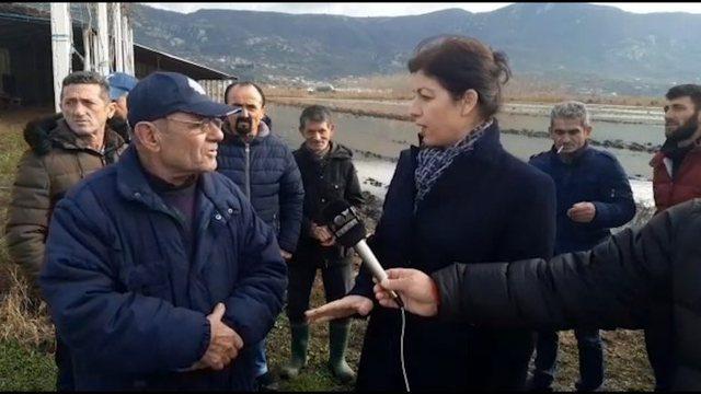 Tokat e përmbytura në Lezhë, PD: Askush nuk shkon për