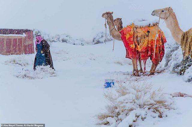Borë dhe në shkretëtirë, temperaturat - 2 gradë celsius