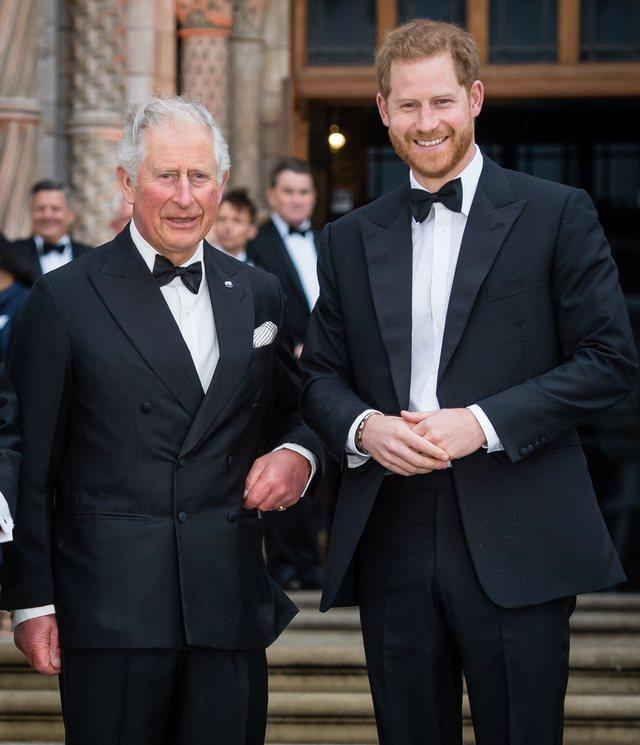 Princi Charles i revoltuar me Harry-n: Nuk e meriton privilegjin e të qenit