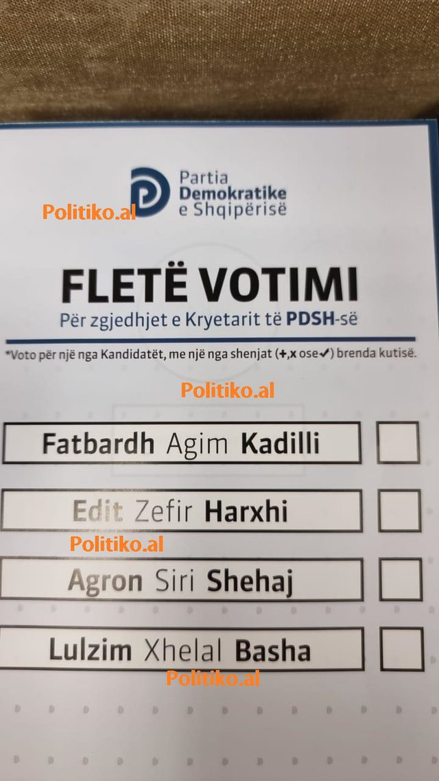 Elections in the DP, this is the ballot for the election of the new mayor