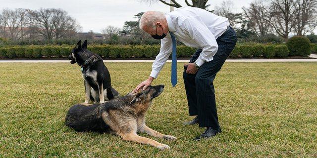 Joe Biden humb qenin e tij të dashur: Champ jetoi me ne për 13 vite,