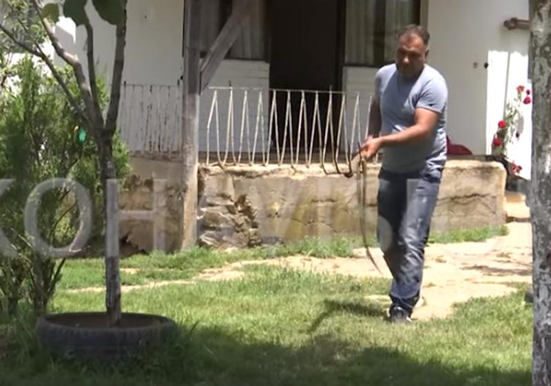 Kalojnë 3 netë në oborr, familja shqiptare rrëfen tmerrin: