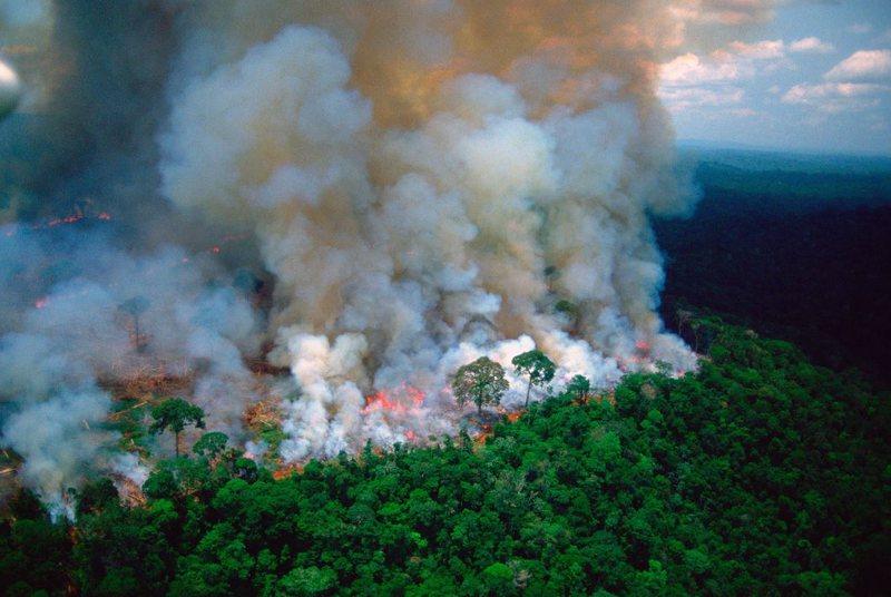 Zjarret shkrumbuan Amazonën/ Presidenti Bolsonaro jep urdhër për