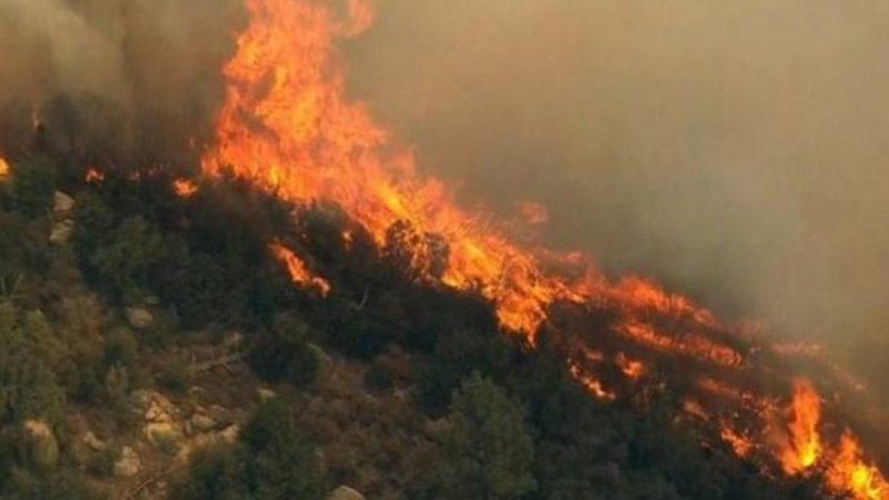 Erseka në panik/ Zjarri i madh vë në lëvizje