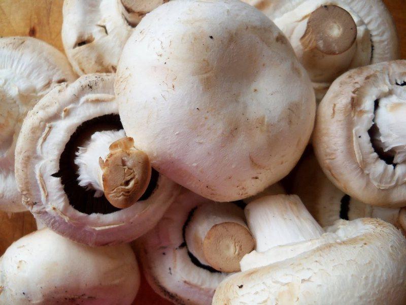 Konsumoni sa më shumë kërpudha, do të befasoheni nga