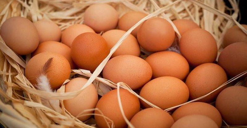 E pabesueshme/ Hëngri 42 vezë për të fituar bastin me