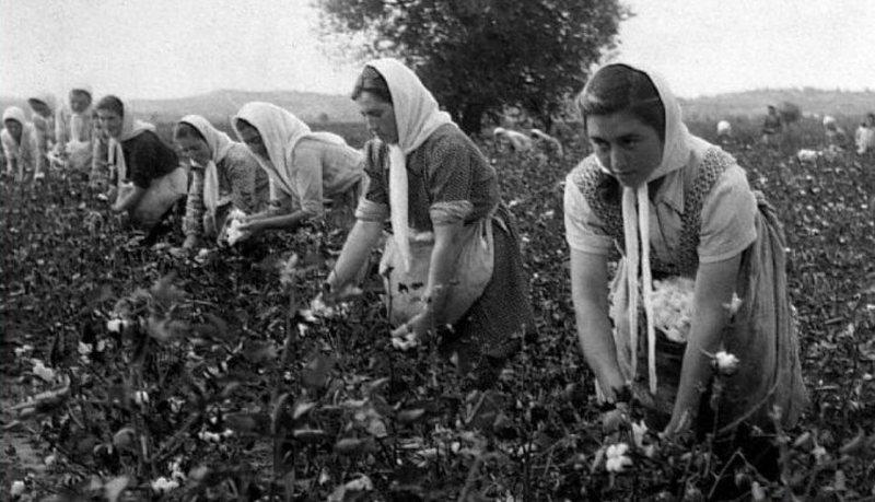 CIA zbardh detajet e kolektivizimit në Shqipëri, ja detyrat që