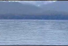 Ka dalë një Loch Ness i ri në Argjentinë? Misteri i