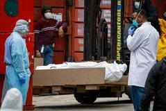 Tragjedi në SHBA/ Mbi 1000 të vdekur në 24 orë, New York