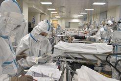 a varikózis kezelésére Saranskban földigiliszták tinktúrája visszér ellen