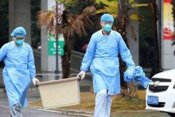 Virusi vdekjeprures kinez që po alarmon botën, shqiptari jep detajet e