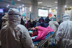 Rritet frikshëm numri i viktimave të virusit të tmerrshëm