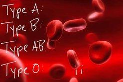 Çfarë tregon grupi i gjakut për personalitetin tuaj? E
