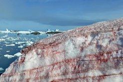 Fenomen i rrallë në Antarktidë, sipërfaqja e bardhë