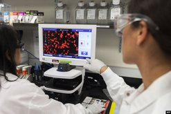 Si po bëhet trajtimi i të infektuarve me koronavirus?