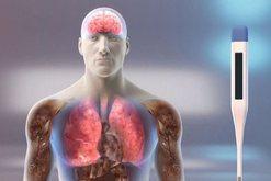 Shkenca e shpjegon me detaje si hyn dhe e godet koronavirusi organizmin e