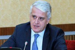 21 emigrantët e bllokuar në Kapshticë, Pandeli Majko bën