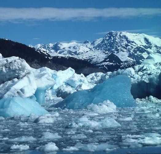 I nxehtë rekord në Antarktidë, temperatura të tilla nuk