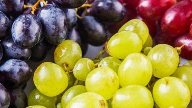 Farat e rrushit/ Zbuloni si t'i përdorni për veshkat dhe