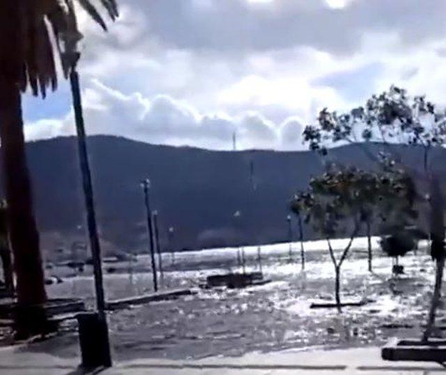 Pamjet virale/ Pas tërmetit të fuqishëm, cunami godet ishullin
