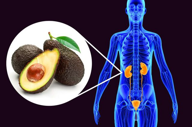 What can happen to your body if you start eating an avocado a day for a month?
