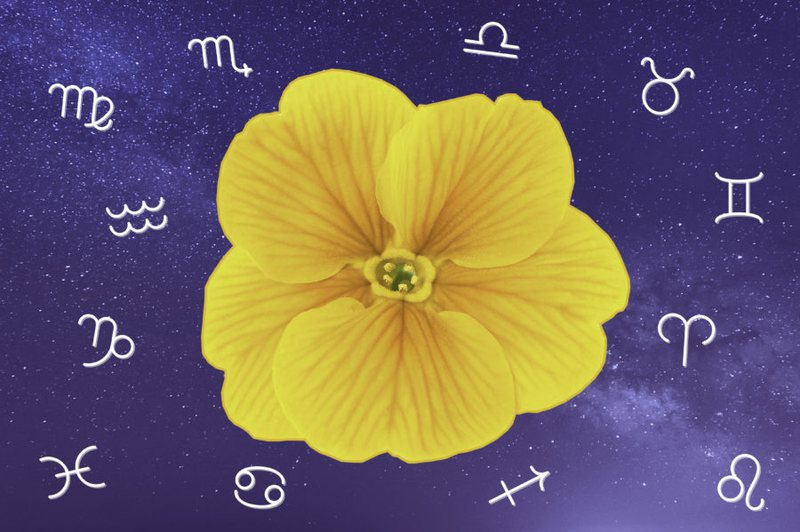 The monthly horoscope comes out, here is what Mars will be like for all the