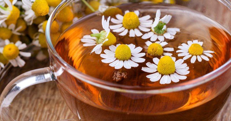 Kamomili, si ta përdorni për stomakun, imunitetin, lëkurën