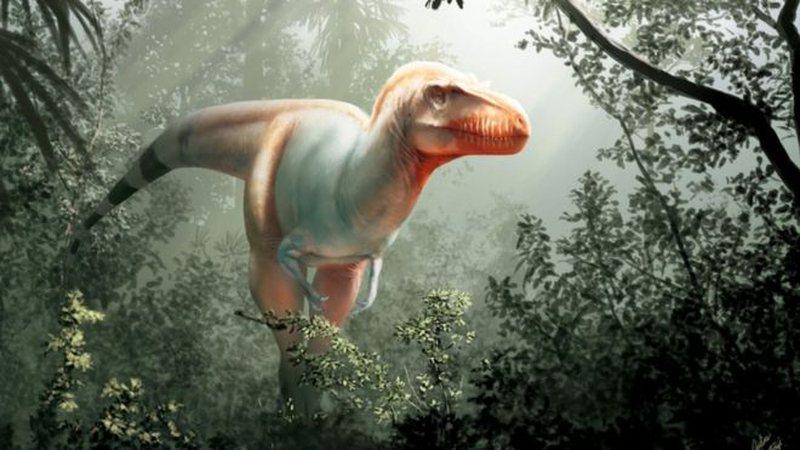 Engjëlli i Vdekjes, zbulohet fosili prehistorik që hedh dritë mbi