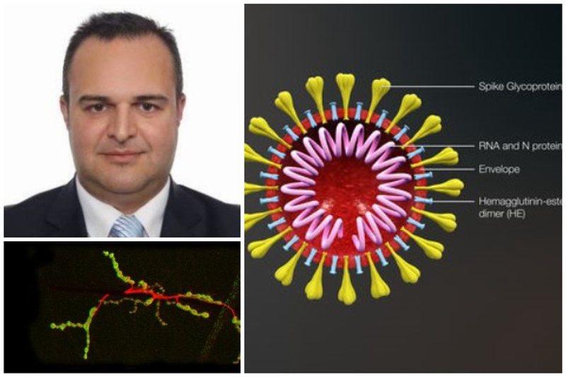 Prof. Edvin Prifti: Të pathenat e koronavirusit dhe inteligjenca virale